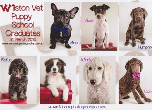 Puppy Preschool Grad March 2014