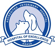 Wilston Vet Attains ASAVA Hospital Accreditation August 2016