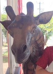 Stolen Giraffe