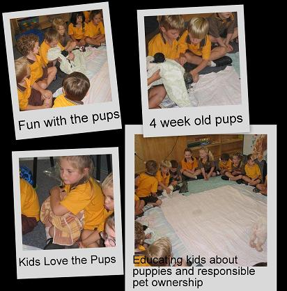 kids and pups