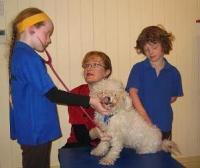Wilston School Kids Pet Pep