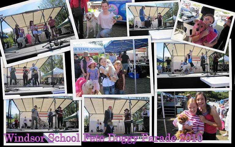school fete collage
