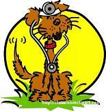 wilston vet housecall